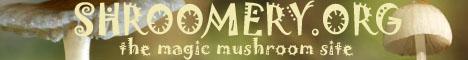 Magic Mushrooms Shroomery