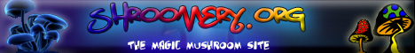 Magic Mushrooms Shroomery