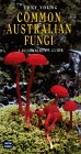 Common Australian Fungi: A Bushwalker's Guide (Bush Books)