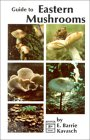 Guide to Eastern Mushrooms