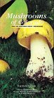 Mushrooms of Colorado and the Southern Rocky Mountains: And the Southern Rocky Mountains