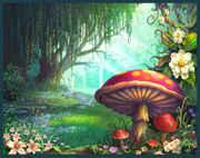 enchantedforest_small.jpg