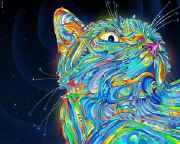 LSD_CAT.jpg