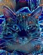 blue_jewel_cat.jpg